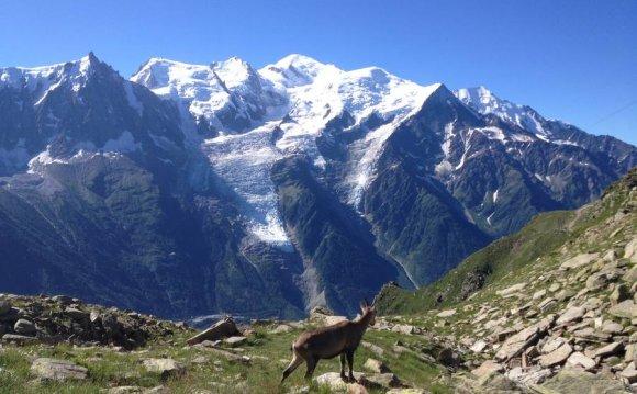 Zoom Mont Blanc
